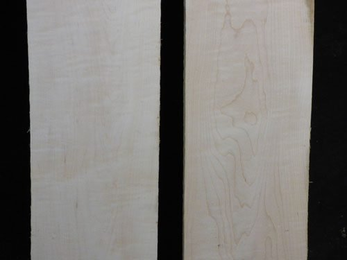 Eastern Red Curly Maple – Pack 107