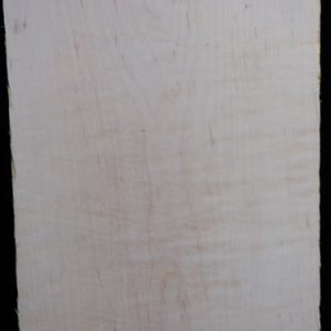 Eastern Red Curly Maple – Pack 8