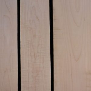 Eastern Red Curly Maple – Pack 9