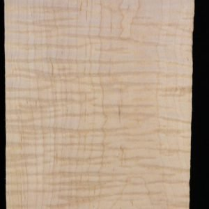 Eastern Red Curly Maple – Pack 10