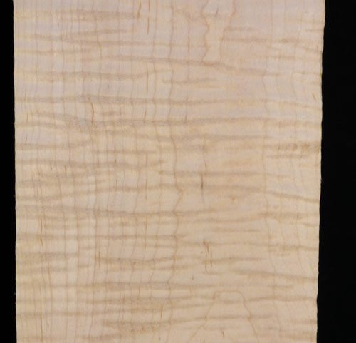 Eastern Red Curly Maple