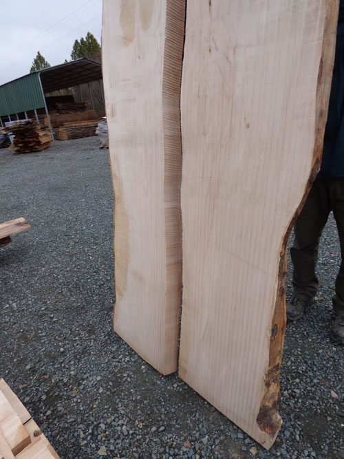 Maple Slabs Set for River Table
