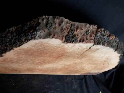 Madrone Burl Slab