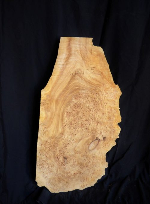 Thick Elm Burl Wood Slab 38″