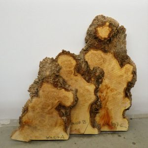 Boxelder Slabs – Set of 3